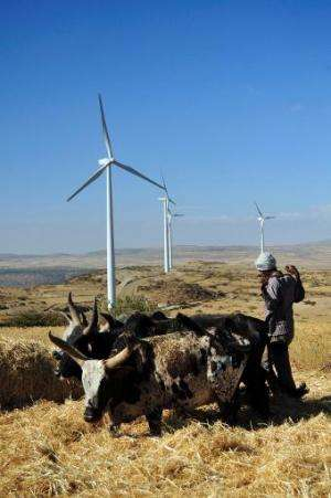 A man works along a road near turbines at Ashegoda wind farm in Ethiopia's northern Tigray region, on November 28, 2013