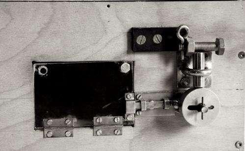 Cockatoos 'pick' puzzle box locks