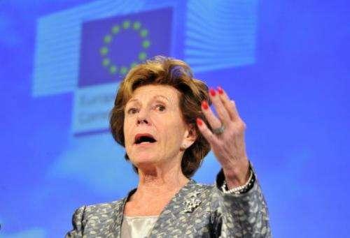 EU commissioner in charge of new technologies Neelie Kroes speaks on December 18, 2012 in Brussels