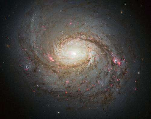 Hubble observes the hidden depths of Messier 77