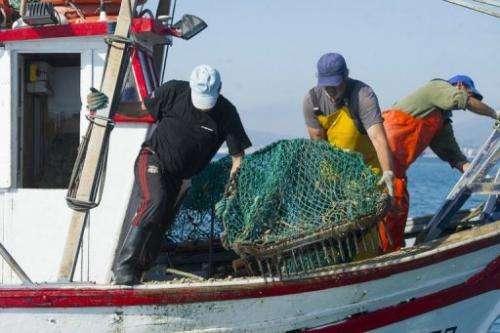 Men from La Linea de La Concepcion fish on August 16, 2013 in the area where Gibraltar dropped concrete blocks
