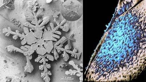 NASA Goddard lab works at extreme edge of cosmic ice