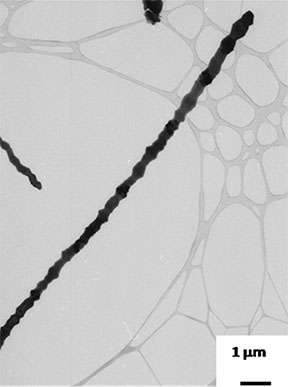 New coating may help joint replacements bond better with bone