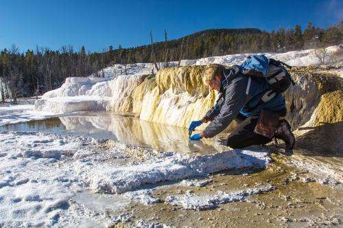 Oil- and metal-munching microbes dominate deep sandstone formations