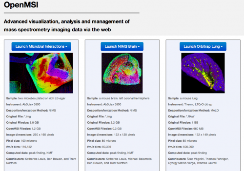 OpenMSI: A science gateway to sort through bio-imaging's big datasets