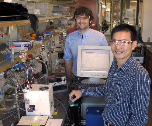 Oregon researchers shed new light on solar water-splitting process