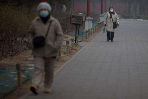 People wearing face masks walk through a park during heavily polluted weather in Beijing on January 30, 2013