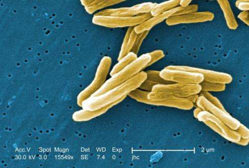 Potential new drug for tuberculosis