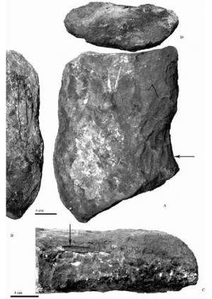Tracing large tetrapod burrows from the Permian of Nei Mongol, China