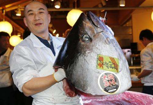 Tuna collapse fears fail to curb Japan's appetite