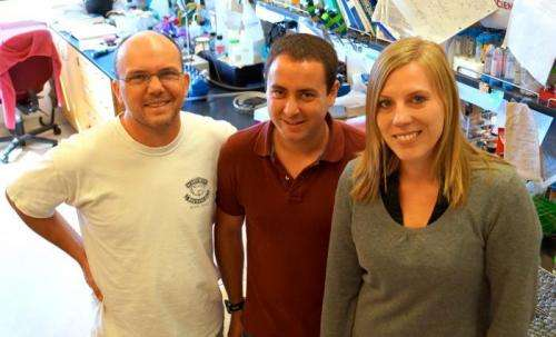 UC Santa Barbara researchers uncover new pathways in bacterial intercellular competition