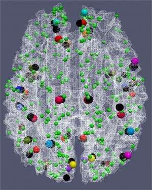 UGA researchers use new map of human brain to study dementia