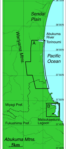 Underground permeation of seawater in tsunami disaster areas caused by 2011 off the Pacific coast of Tohoku earthquake
