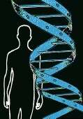 10 years on, still much to be learned from human genome map