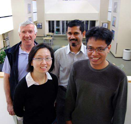 Scientists find new source of versatility so 'floppy' proteins can get things done