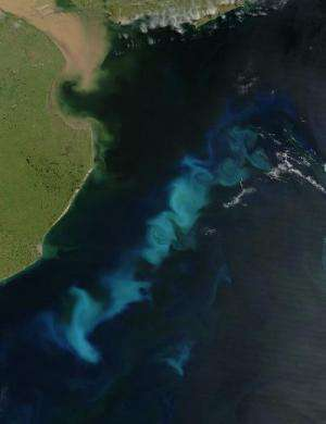 Scientists discover new variability in iron supply to the oceans with climate implications