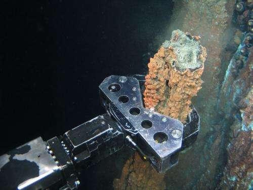 Final frontiers: The deep sea