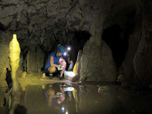 Borneo stalagmites provide new view of abrupt climate events over 100,000 years