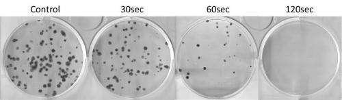 Cold plasma successful against brain cancer cells