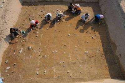 New discovery of ancient diet shatters conventional ideas of how agriculture emerged