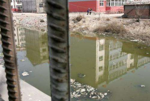 This file photo shows a polluted river in Liukuaizhuang Village in Tianjin, southeast of Beijing, on March 16, 2006