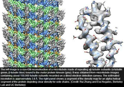 New player emerges in mapping protein structures