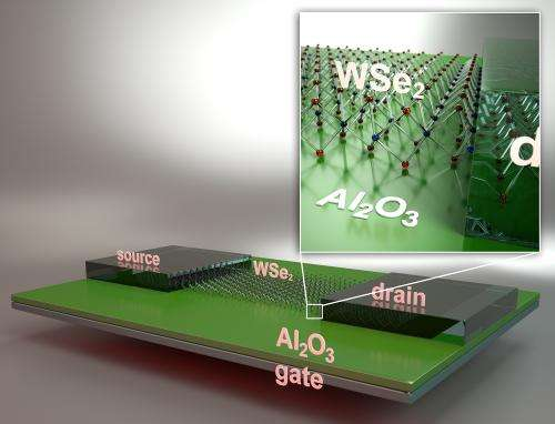 2-dimensional atomically-flat transistors show promise for next generation green electronics