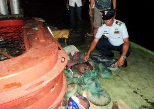An undated handout photo received April 23, 2013, from PCG shows officers inspecting a boat holding protected pangolins