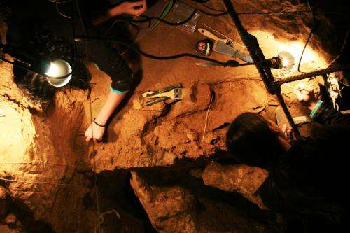 Scientists provide a more accurate age for the El Sidron cave Neanderthals