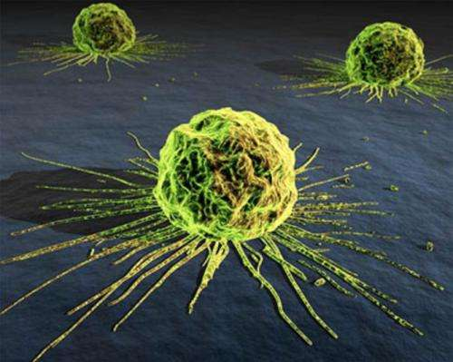 Explainer: What is cancer?