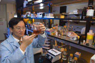Virginia Tech research team creates potential food source from non-food plants