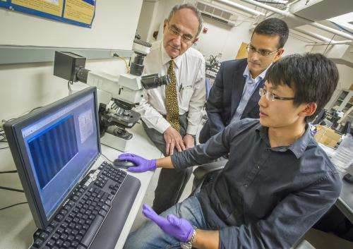 Berkeley Lab researchers discover universal law for light absorption in 2D semiconductors