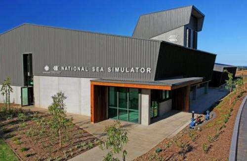 Image provided by the Australian Institute of Marine Science on August 1, 2013 shows the National Sea Simulator