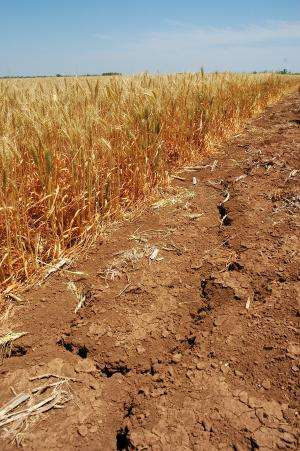 Study examines climate change effects on crop mix shift, transportation