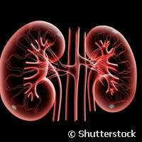 New approach to early diagnosis of chronic renal diseases in children