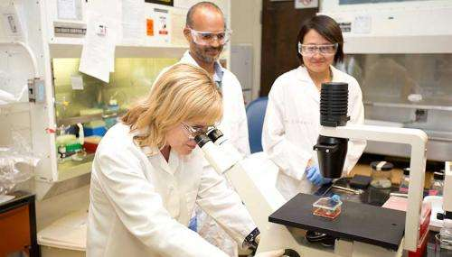 Scientists make new discoveries in the transmission of viruses between animals and humans
