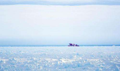 Image taken by Andrew Peacock on December 28, 2013 shows the Chinese icebreaker Xue Long in an aborted effort to reach the ship