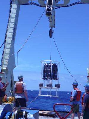Newly discovered ocean plume could be major source of iron