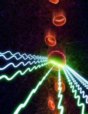 Researchers develop new type of fluorescent camera for blood diagnostics, brain mapping