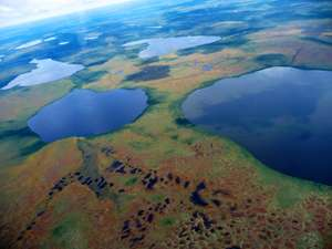 Research finds Hudson Bay Lowlands have undergone enormous environmental changes in the past two decades