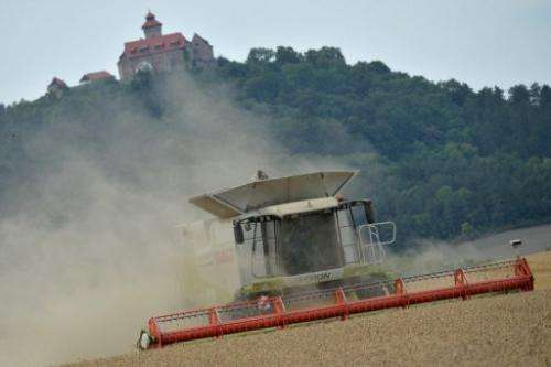 A combine harvester at Holzhausen, eastern Germany, on August 21, 2013