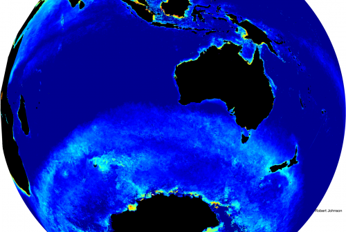 Algorithm finds missing phytoplankton in Southern Ocean