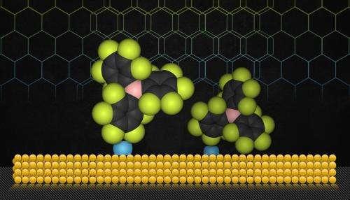 A new kind of chemical 'glue'