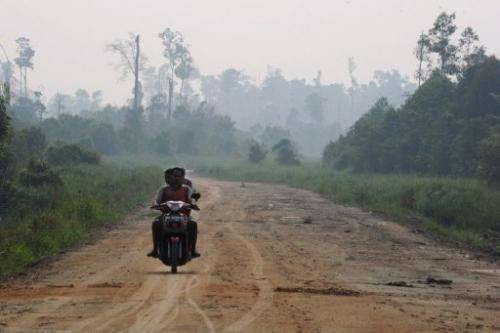 A new road leading to a protected peatland forest is seen covered by haze from  fires on Sumatra island, June 29, 2013