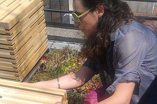A patio space transformed: GSD students create a gathering spot that also cleans stormwater