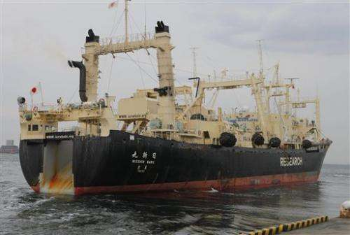 Australia and Japan set for court over whaling