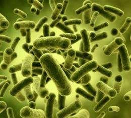 Bacteria adapt and evade nanosilver's sting