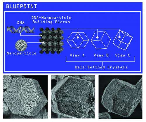 Slowly cooled DNA transforms disordered nanoparticles into orderly crystal