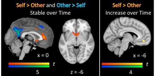 Brain biology tied to social reorientation during entry to adolescence