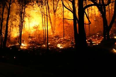 Bushfire smoke poses health risks